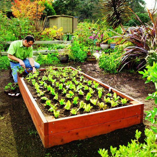 The 8 Habits All Successful Gardeners Have Global Garden