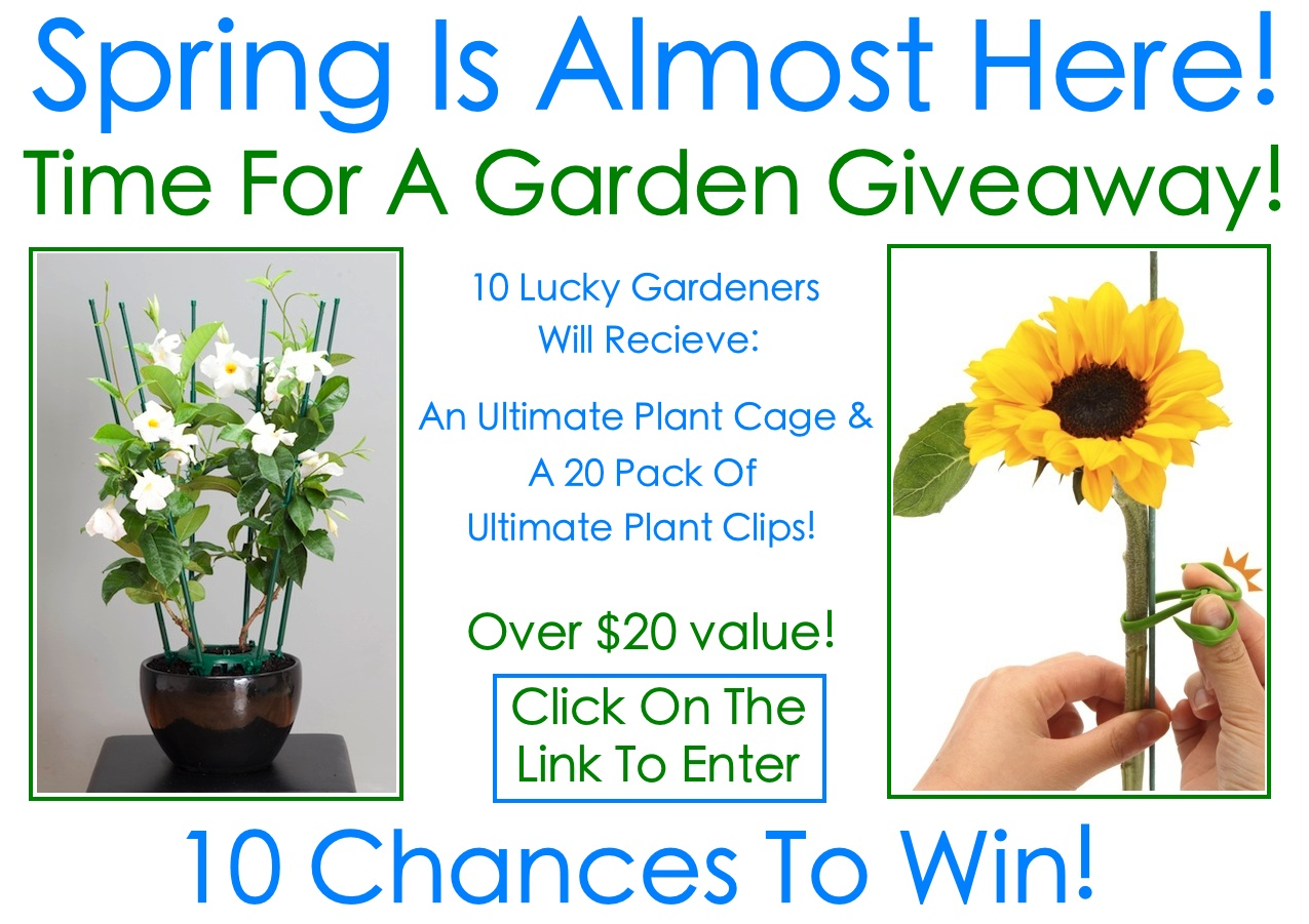 Spring Giveaway 2013
