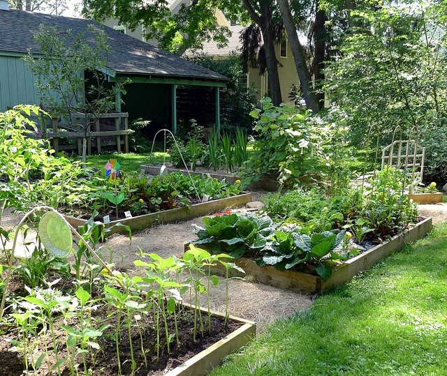 20 Raised Bed Garden Designs And Beautiful Backyard: How To Create A Beautiful Raised Gardening Bed