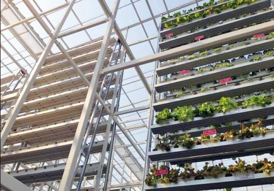 vertical farm functioning
