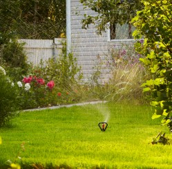 What You'll Need to Do to Complete Your Newly Built Home's Landscaping