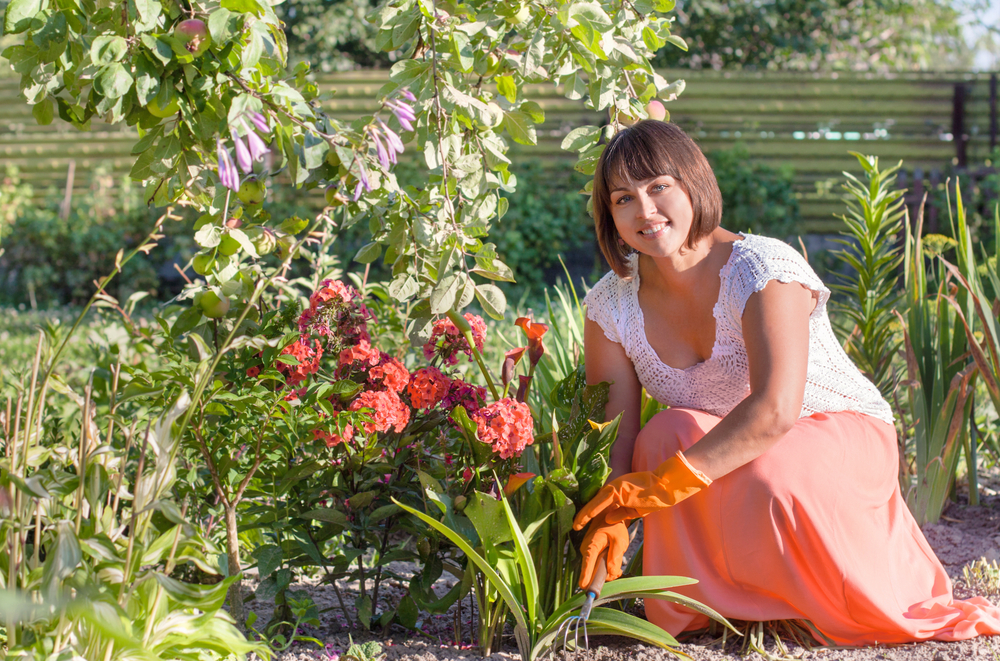 Do It Yourself Garden: Do It Yourself Or Hire The Professionals: Tackling Garden
