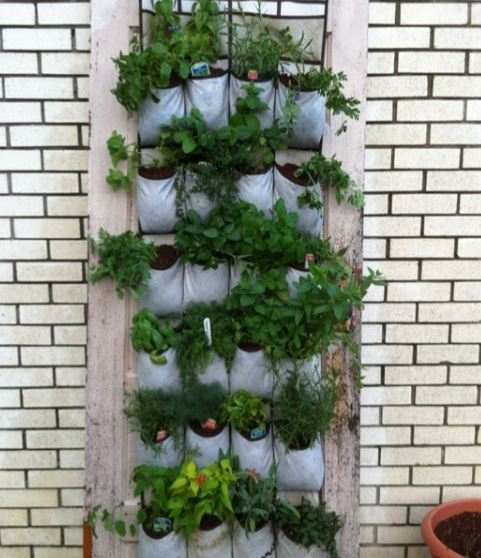 DIY Garden Six Ideas for the Urban Planter Global Garden