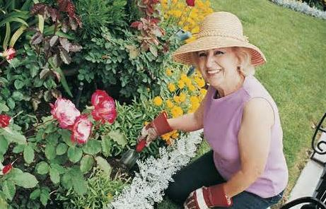 Charmant Spring Gardening Equipment All Flower Fans Need