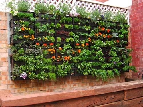 Best 20 Herb Garden Design 2017: Global Garden Friends, Inc