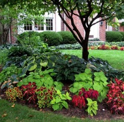 4 Tips for Decorating Your Front Yard on a Budget