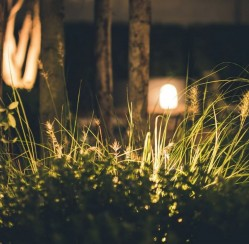 Garden Lighting: How to Display Your Favorite Flowers Day or Night
