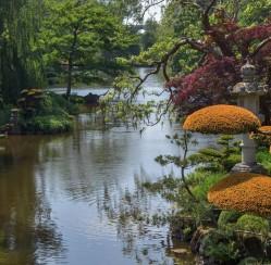 Essentials of Oriental Gardens
