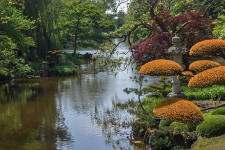 garden-3439568_1280