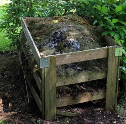 How to Keep Termites in Your Compost Heap from  Entering Your Home