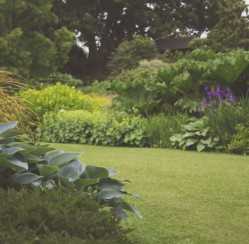 4 Must-haves for A Gorgeous Greener Garden