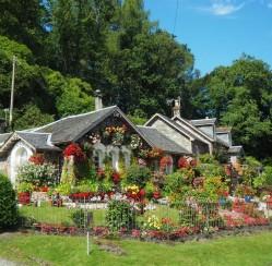 Ornamental Look: 4 Design Ideas for Your Backyard and Garden