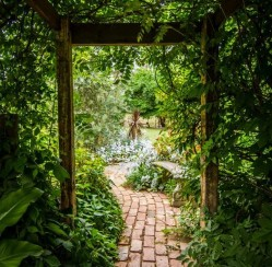How to Create a Unique Look for Your Garden