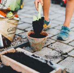5 Garden Gadgets That Add Whimsy to Your Backyard