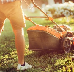 How to Keep Your Landscape Green in a Dry Summer
