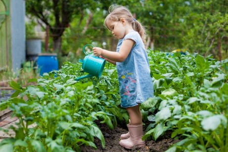 Why You Should Teach Your Kids the Importance of Gardening (1)