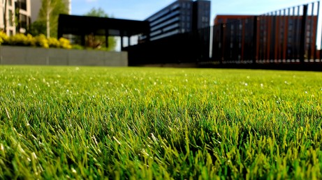 4 Essential Lawn Care Products for a Beautiful Yard
