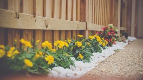 4 Important Services a Landscape Company Should Provide