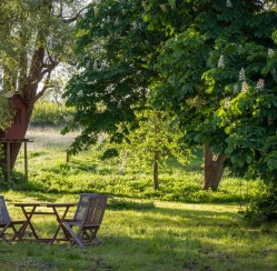 Advanced Lawn Maintenance Tips for Large Yards
