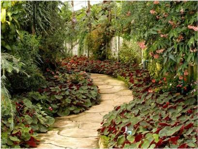 Pouring a Garden Path