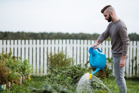 A young male agronomist is watering a green plant in a garden.