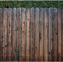 How to Create a Border Between Your Yard and Your Neighbor's