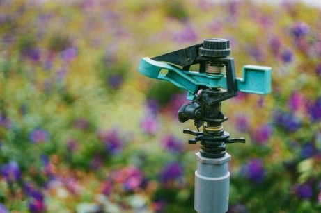 What You Need to Know Before Installing a Sprinkler System (2)